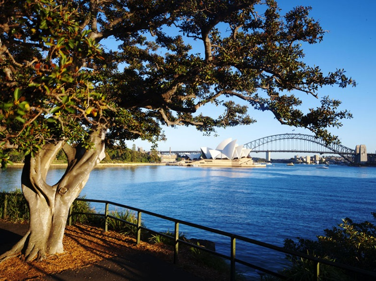 Grant Associates appointed by The Royal Botanic Garden ...