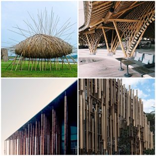 #Archilovers_Bamboo
